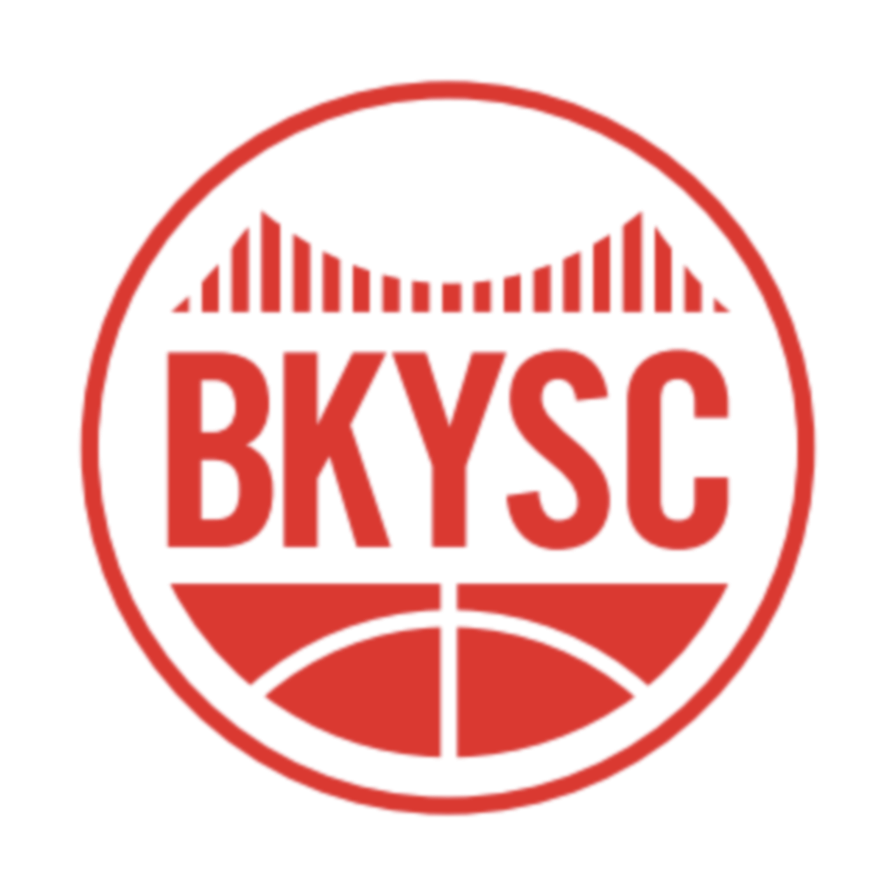 logo of Brooklyn Youth Sports Club